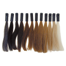 Image 1 - 12 Levels Hair Color Testing Swatches 100% Human Hair by Celebrity at Giell.com