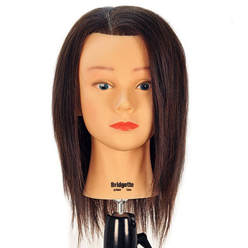 """Image 1 - Bridgette 17"""" 100% Human Hair Brown Cosmetology Mannequin Head by Celebrity at Giell.com"""