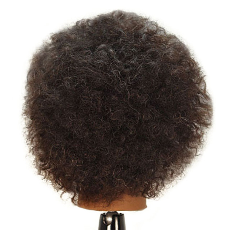 "Image 3 - Naomi 16"" Afro Style 100% Human Hair Cosmetology Mannequin Head by Celebrity at Giell.com"