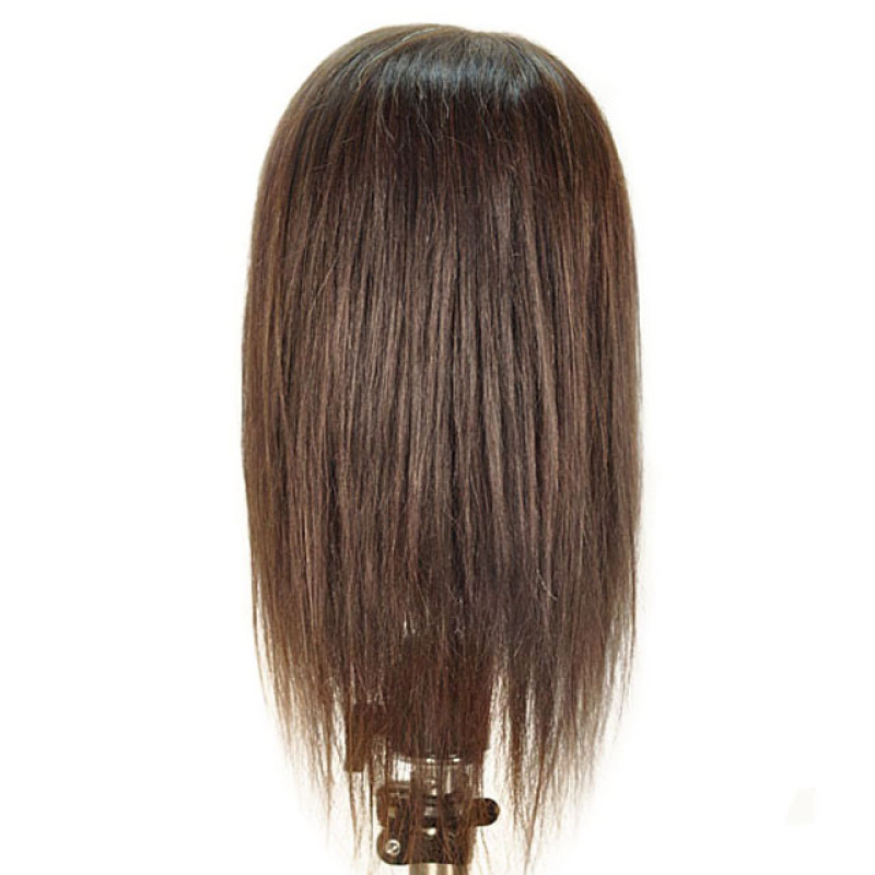 """Image 3 - Debra 19"""" 100% Human Hair Cosmetology Mannequin Head by Celebrity at Giell.com"""