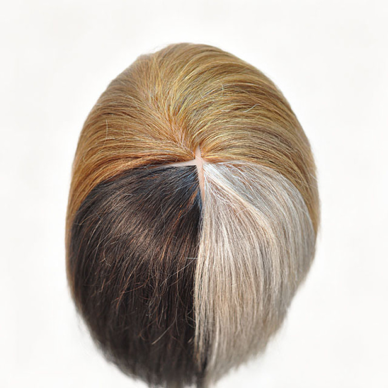 """Image 4 - Tammie Quad Color 17"""" 100% Human Hair Cosmetology Mannequin Head by Celebrity at Giell.com"""