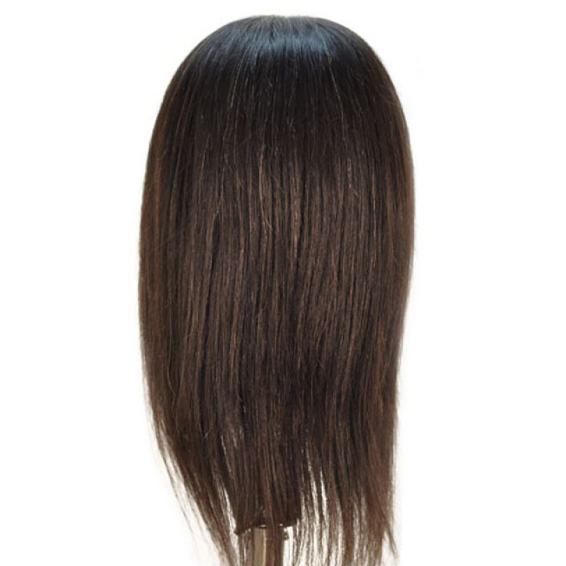 """Image 3 - Whitney 19"""" Ethnic 100% Human Hair Cosmetology Mannequin Head by Celebrity at Giell.com"""
