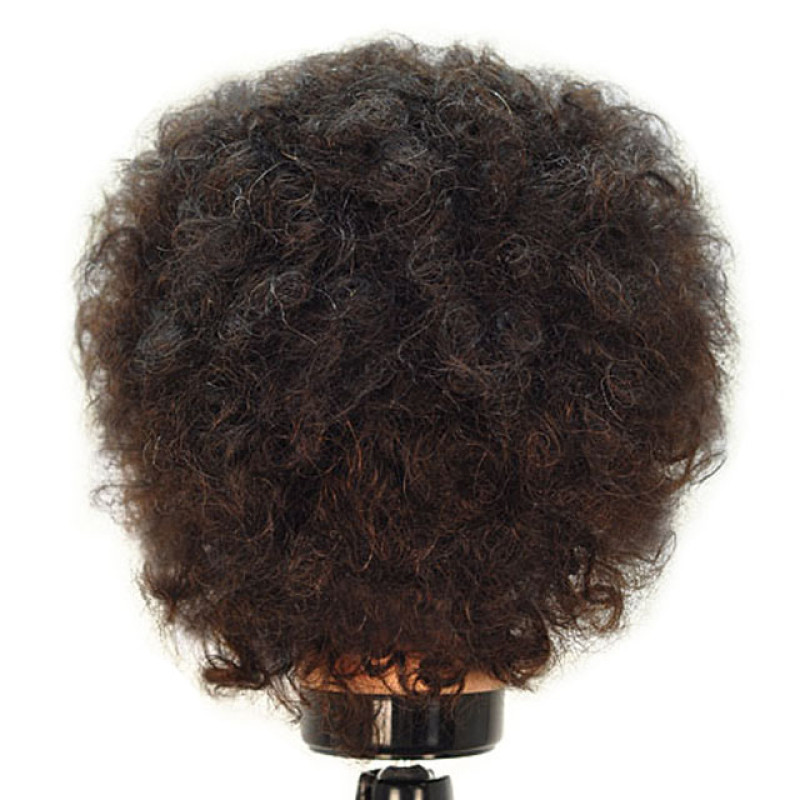"Image 3 - Erica 16"" Remy Naturally Curly 100% Human Hair Cosmetology Mannequin Head by Celebrity at Giell.com"