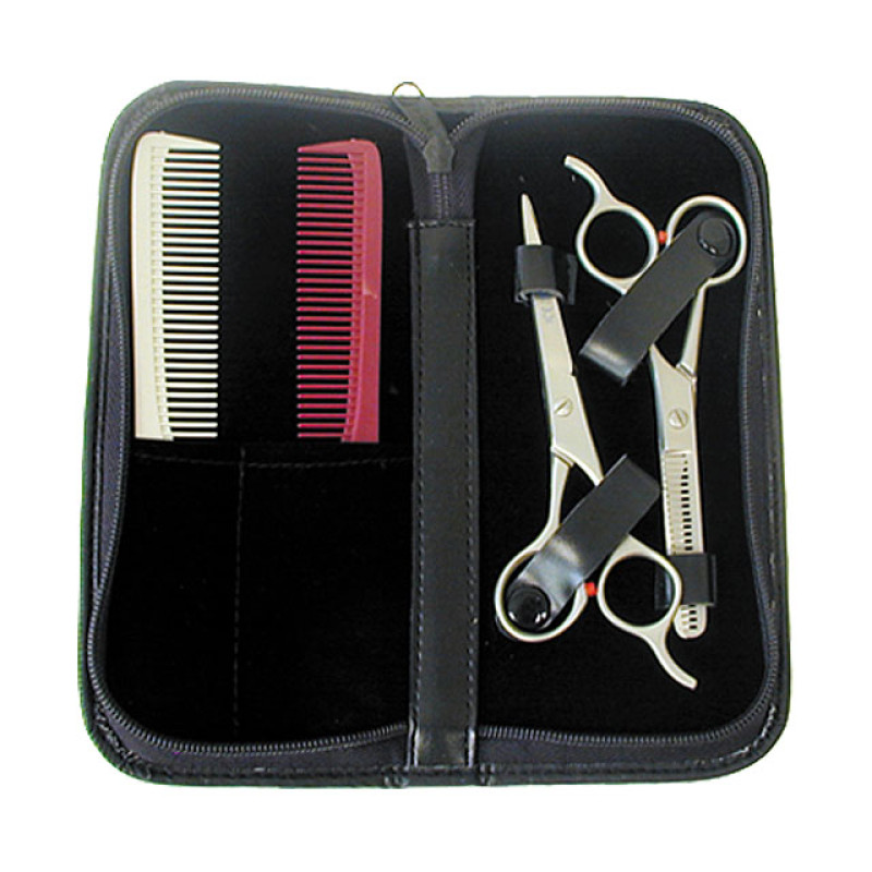 Image 1 - 4 pcs Hair Shears and Thinner Set with Combs by Gold Magic at Giell.com