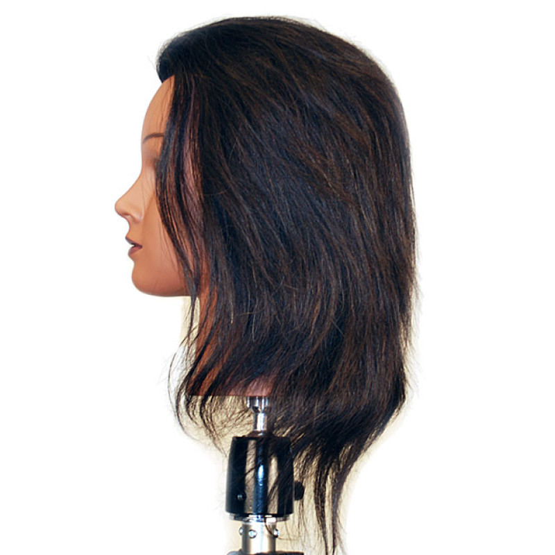 "Image 2 - Jasmine 17"" 100% Human Hair Ethnic Cosmetology Mannequin Head by Celebrity at Giell.com"