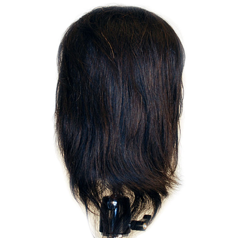 "Image 3 - Jasmine 17"" 100% Human Hair Ethnic Cosmetology Mannequin Head by Celebrity at Giell.com"