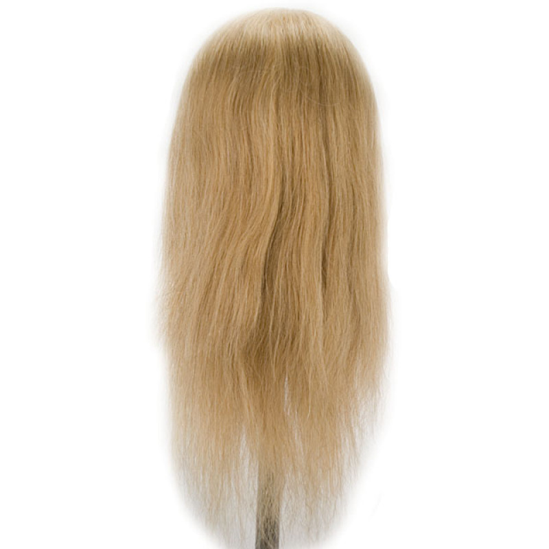 "Image 3 - Daisy 24"" Blonde 100% Human Hair Cosmetology Mannequin Head by Celebrity at Giell.com"