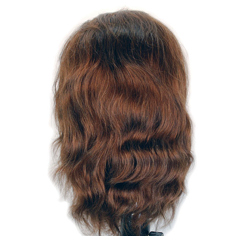 """Image 3 - Marcel 16"""" Male Bearded Cosmetology Mannequin Head 100% Human Hair by Giell at Giell.com"""