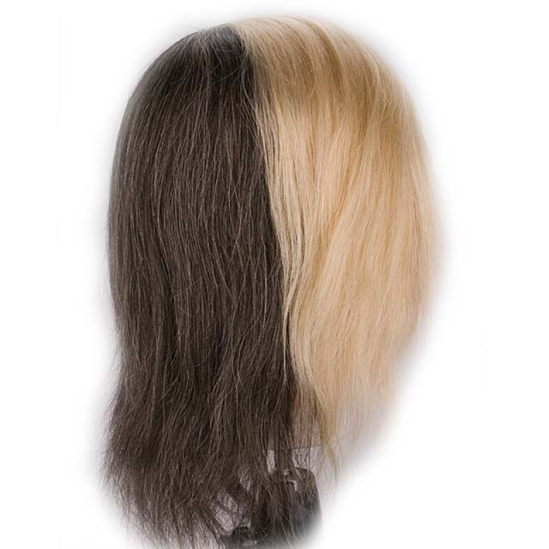 "Image 2 - Color Quad 18"" 100% Human Hair Coloring Cosmetology Mannequin Head by Giell at Giell.com"