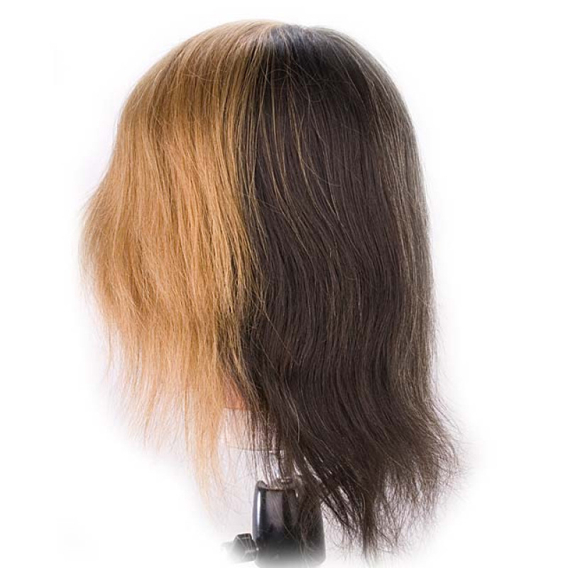 "Image 3 - Color Quad 18"" 100% Human Hair Coloring Cosmetology Mannequin Head by Giell at Giell.com"